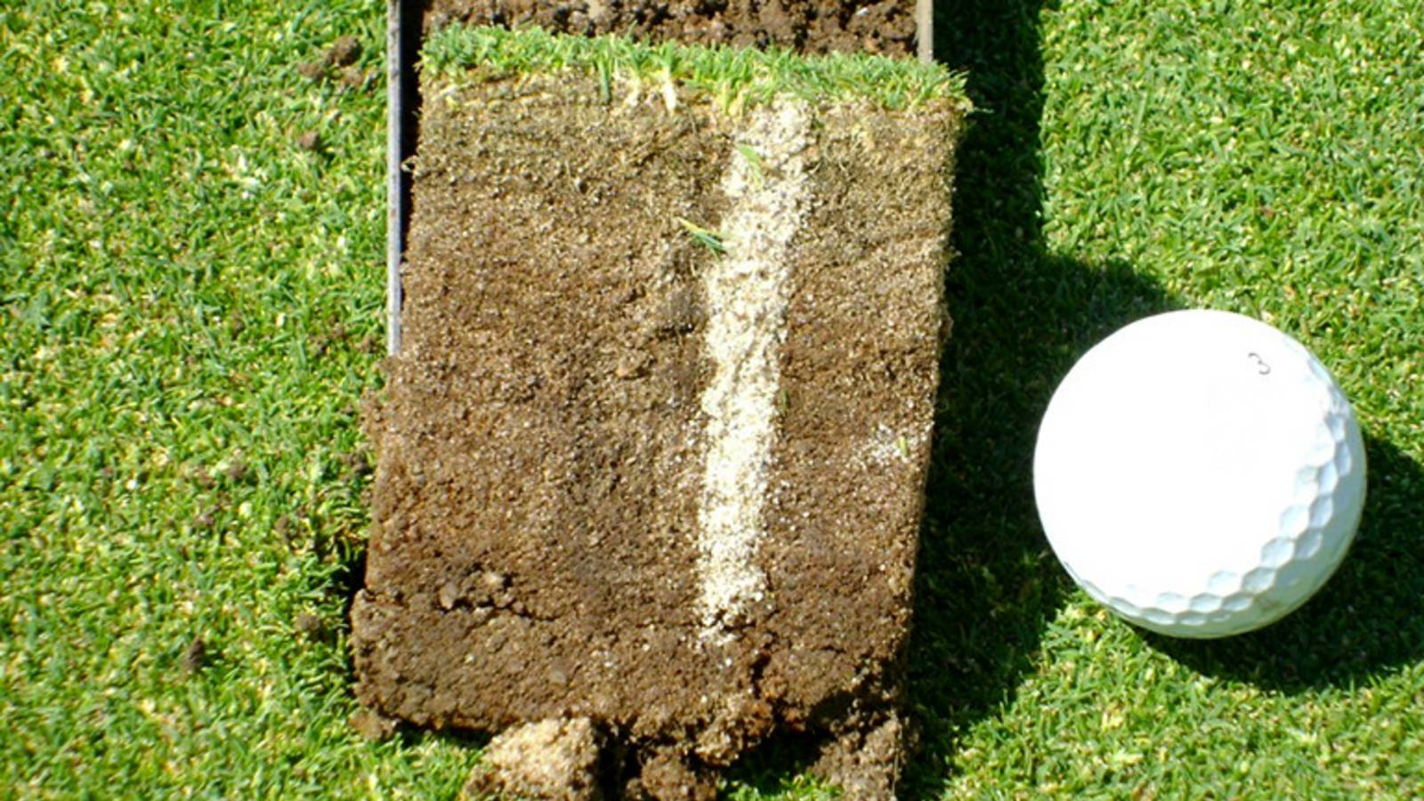 Why do golf courses aerate so much for Soil and green