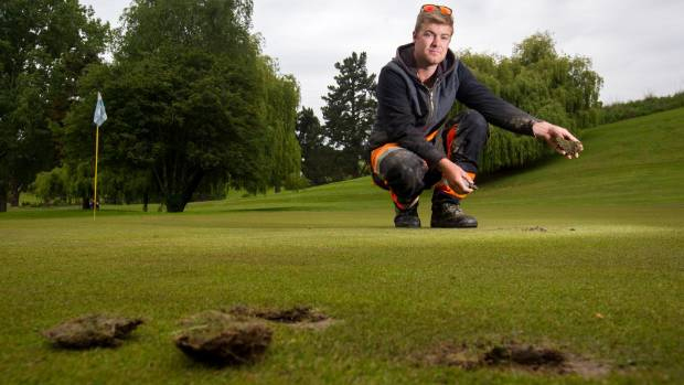 Damage To Green And Missing Flags Frustrates Golf Club