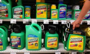 EU declared Monsanto weedkiller safe after intervention from controversial US official