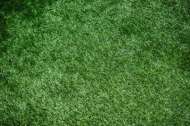 Jobs Lost As Sports Turf Contractor Slips Into Administration
