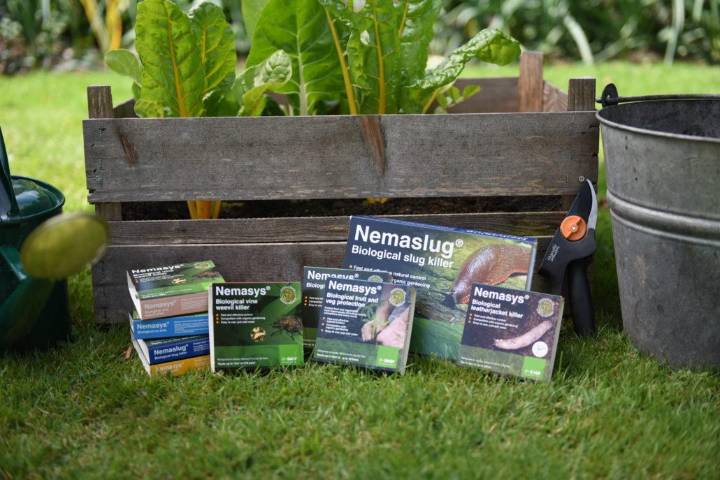 Fresh Is Best In Nematodes' Battle Against Pests