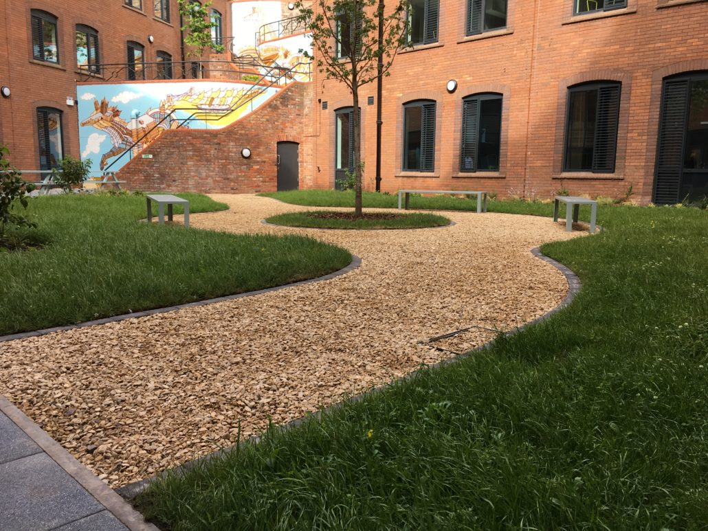 Wildflower Project Makes The Grade