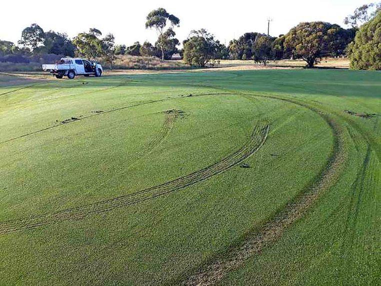 Vandals Target Golf Greens