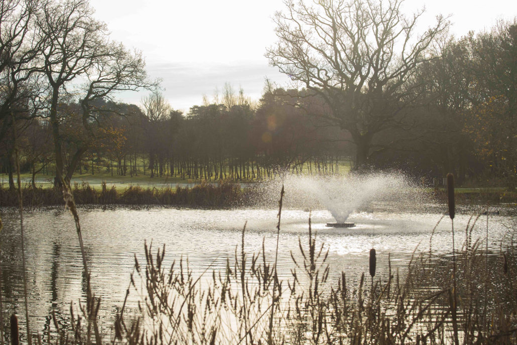 Otterbine Fountain At Ladbrook Park