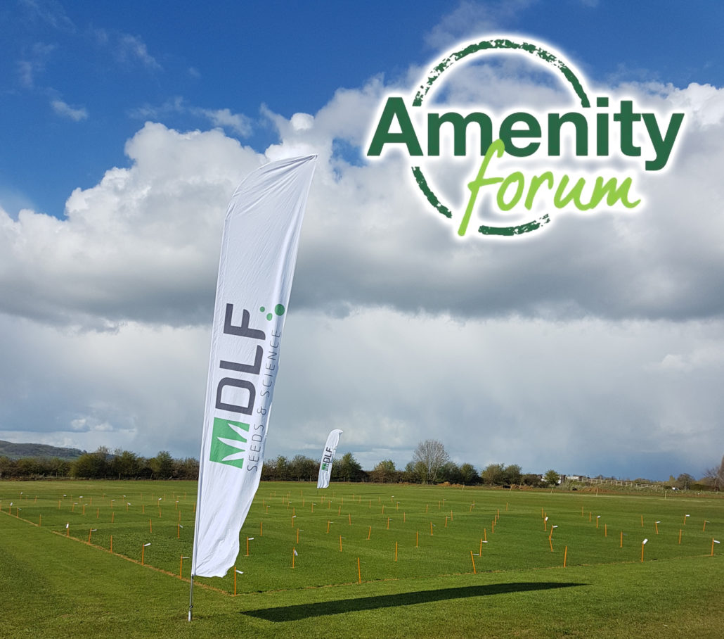 DLF Join The Amenity Forum