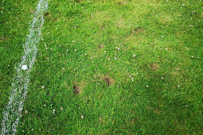 Pitch Vandalised With Golf Clubs