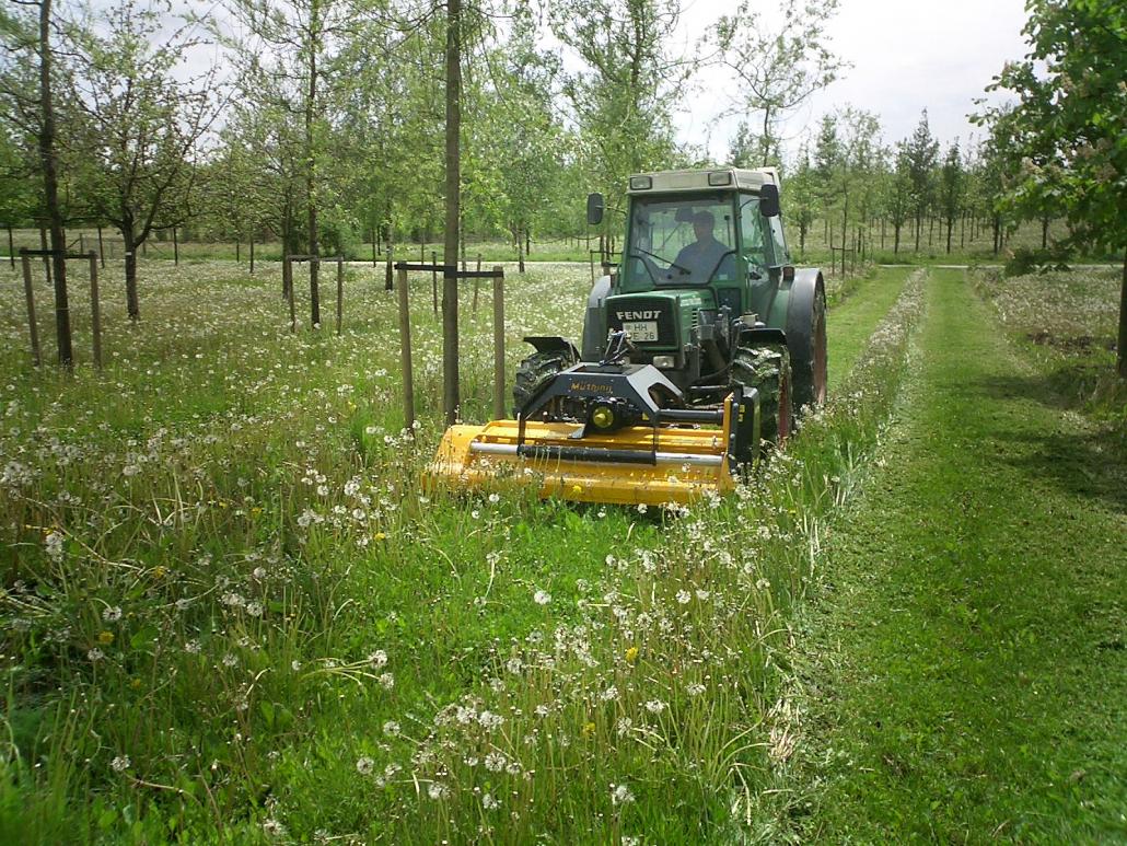 The benefits of Mulching