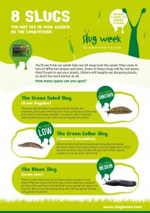 Announcing Slug Week