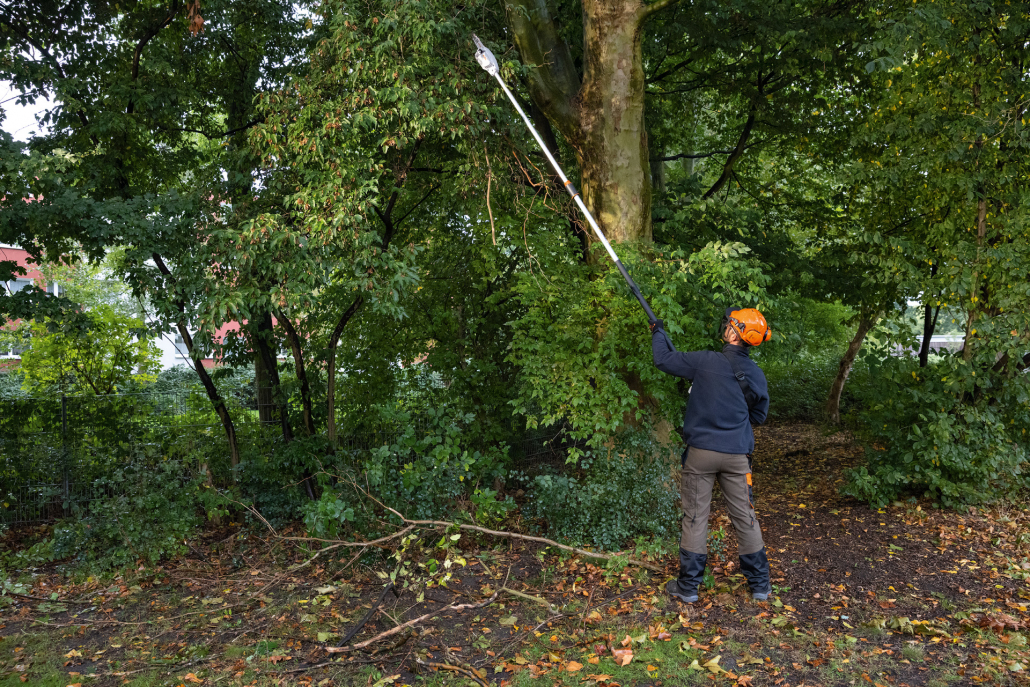 STIHL launches updated pole pruner range