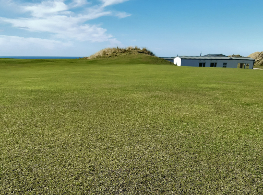 100% fescue from Johnsons delivers 100% satisfaction