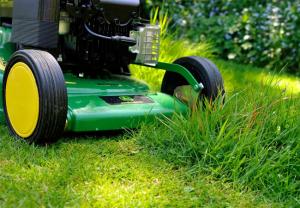Groundsman / Gardener
