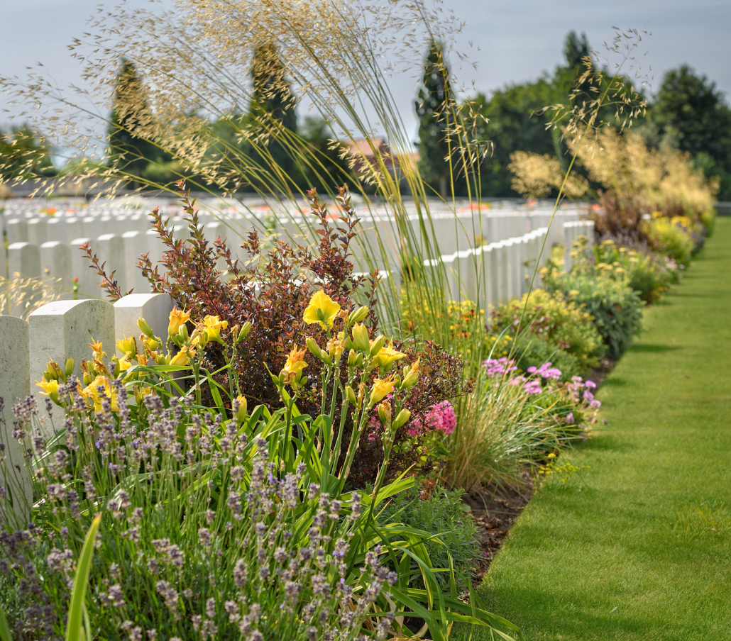 Hayter partners with Commonwealth War Graves Foundation