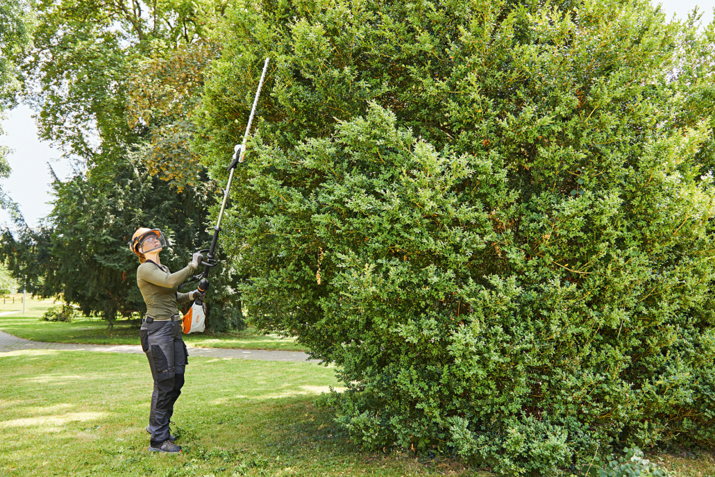 STIHL launches cordless hedge trimmer