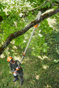 STIHL extends cordless pole pruner range