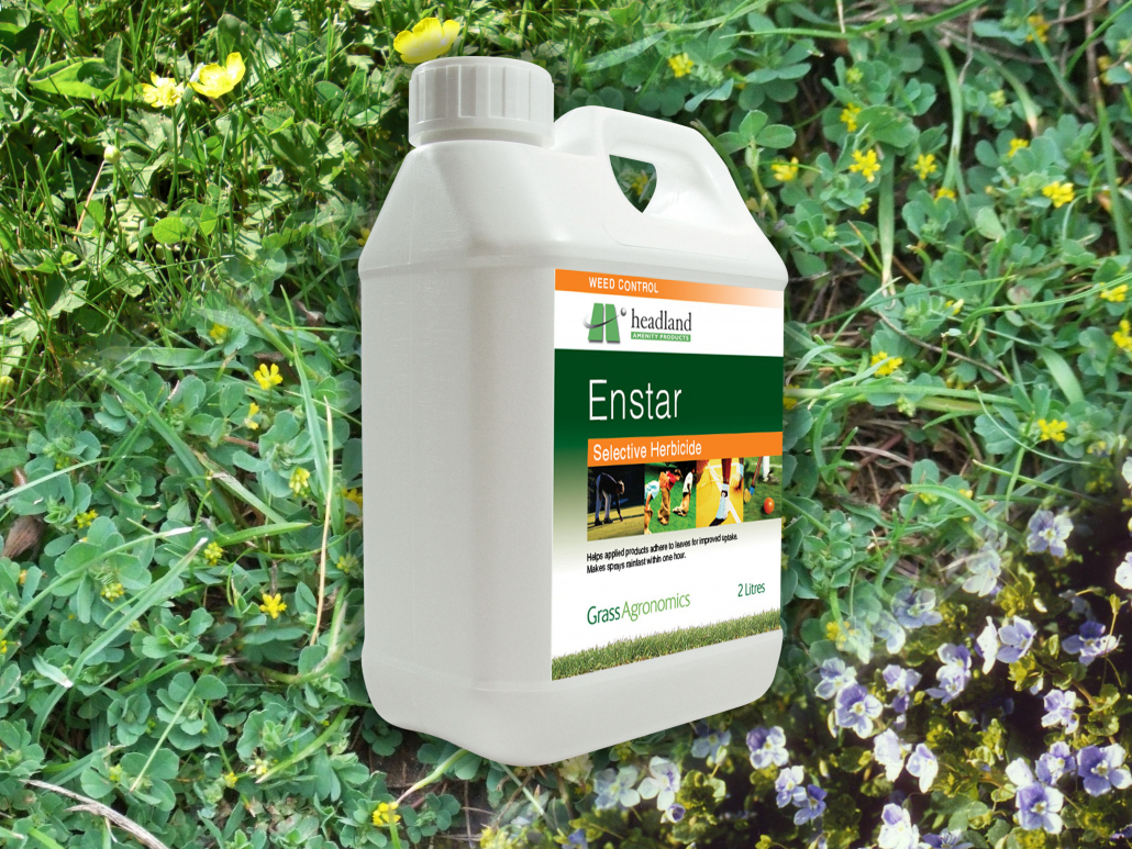 Enstar provides concentrated control