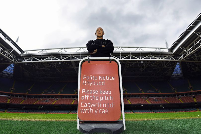 The unsung hero of Wales' national pitch